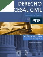 ocesal Civil  GUIA PROCESAL CIVIL