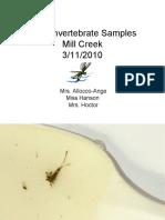 Winter Macroinvertebrate Samples (Mrs. Allocco-Ange, Miss Hanson, Mrs. Hoctor)