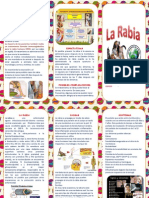 La Rabia PDF