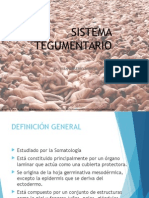 01. Sistema TegumeSISTEMA TEGUMENTARIOntario (1)