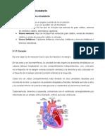 Unidad 3 Sistema Circulatorio