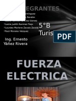 fuerzaelectrica
