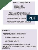Presentación 7 Fosforilación Oxidativa Y fERMENTACIONES.ppt
