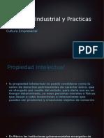 Propiedad Industrial y Practicas Desleales