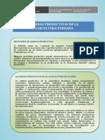 CADENAS PRODUCTIVAS.pdf