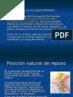 oclusion primaria