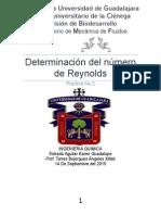 Determinación Del Número de Reynolds.