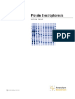 GE Proteinelectrophoresis