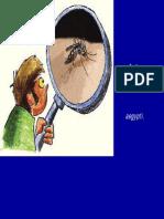 Dengue Ilustraciones