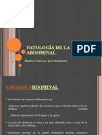 patologadelaparedabdominal-120918030214-phpapp01