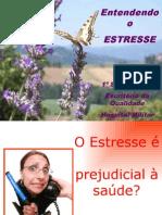 Entendendo o Estresse