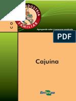 Elaboração de Cajuina