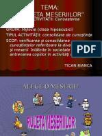 meserii_softeducational