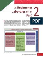 Regimens Laborales en El Peru