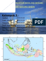 Geostruk (Migas Natuna Basin)