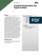 Murilo José Pires, Pedro Ramos - O Termo Modernização Conservadora