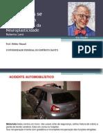 PSICOFISIOLOGIA_NEUROPLASTICIDADE
