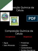 Composição Química da Célula.ppt