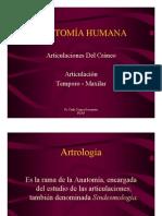 Anatomia - Articulaciones Del Craneo 1 (1)