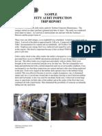 Safety Audit Sample