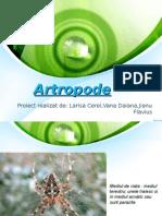 Artropode power point - cls a IX a
