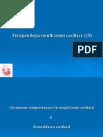 IC Curs 3 - 2015 Transmis