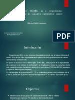 Presentación Paper Lab