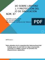 Convencao87 Liberdad Sindical (1)