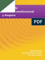 Estudios de D Constitucional y Amparo - José René Olivos Campos