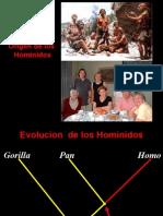 Evolucion de Los Hominidos