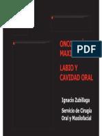Lesiones Premalignas PDF