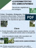 botánica  Subdivisión Gimnospermas