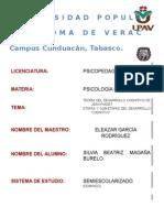 TEORIAS PIAGET.docx