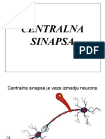 Centralna sinapsa