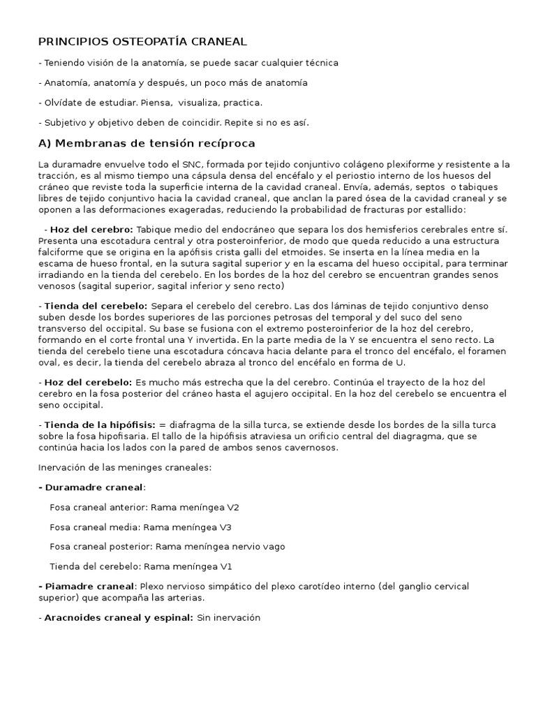 Principios osteopatía craneal.docx