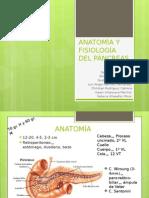 Anatomc3ada y Fisiologc3ada Del Pc3a1ncreas