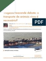Tragédia Reacende Debate:o Transporte de Animais Vivos é Necessário - World Animal Protection Brasil