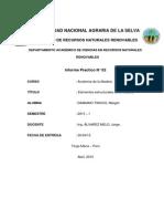 Imforme Practico 2 de Anatomia de La Madera