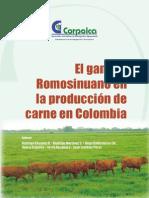 Romosinuano en Prod de Carne 2007
