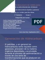 Generacion de Hidrocarburos Liquidos y Gaseosos