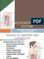 Digestive System.meflores