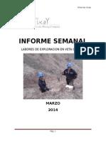 Informe de Mina Los Incas Marzo 2014 -Veta Carmen