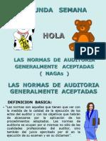 Las Normas de Auditoria NAGAs 2