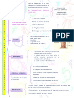 MAPA DE TRAUMATISMO.docx