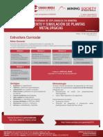 DV55 Modelamiento y Simulacion de Plantas Metalurgicas