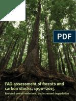 FORESTandCARBONstock.pdf