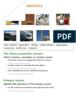 Economic Sectors- WORKSHEETS
