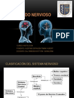 tejido nervioso.pptx
