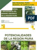Estado Situacional e Importancia Del Banano Orgánico en Piura