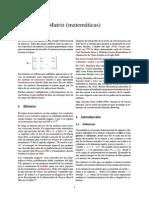 Matriz (matemáticas).pdf
